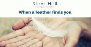 When a feather finds you